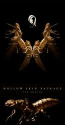 Package - Hollow Skin - 4 by resurgere