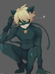 Chat Noir by Chuuwis