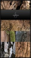 Texture: Nature one by exhale-stock