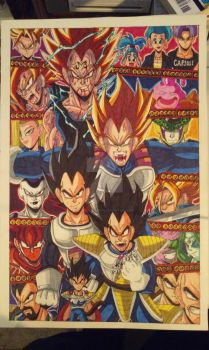 Vegeta: Bow down to the prince of all Saiyans! by d13mon-studios