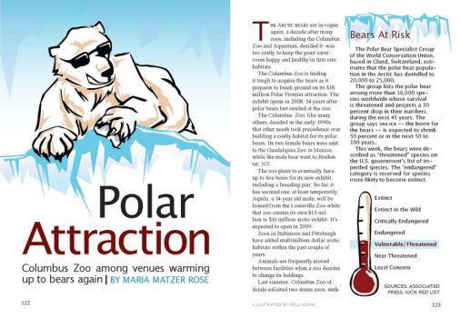 Polar Attraction by Schlady