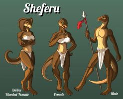 Sheferu Species Reference Sheet by Sriseru