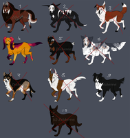 [Points Auction] Canine Adoptables slot 1 [CLOSED] by Zeldienne