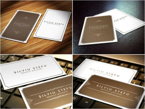 Business Card Mockups by stefusilviu