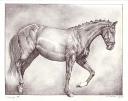 Vanity M - a drawing by Winehorse