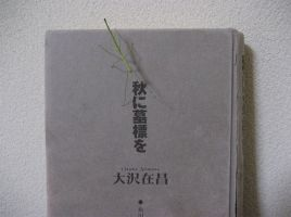 Stick Insect 3 by aru0