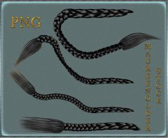 STOCK PNG black braids by MaureenOlder
