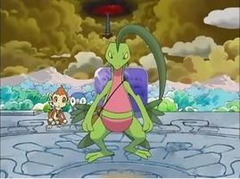 Grovyle- Mystery Dungeon