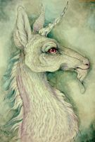 Unicorn Of Whitewood by jessburnett
