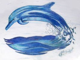 Blue Dolphins by nitronight