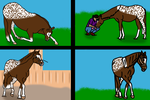 Horse Training - 4 Out 5 by TornadoEllie
