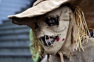 Scarecrow Cosplay P3 by Boredman