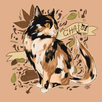 Chai cat by Blueberry-me