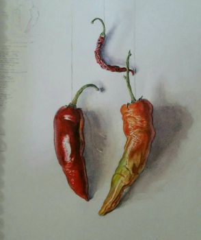 Dried Peppers - Fall 2017 by saving-paints