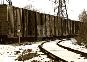 Line of Box Cars by mcklingseisen