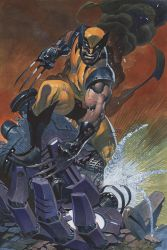 Wolverine color by ChristopherStevens