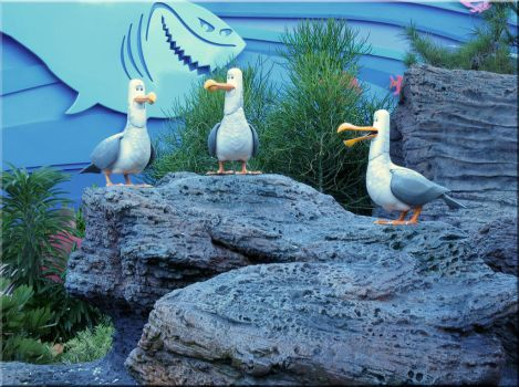 Mine - Seagulls at Living Seas by WDWParksGal-Stock