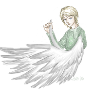 The Swan-Winged Prince by SirLadySketch