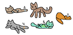 5 cat adopts [open] [cheap] by alliemews