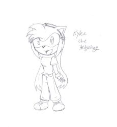 Kylee the Hedgehog by SonicHearts