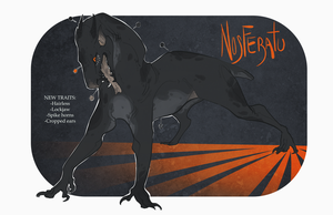 NOSFERATU Auction CLOSED by Stitchy-Face