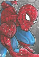 Spiderman Card by DKHindelang