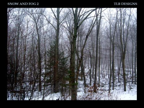 Snow and Fog 2 by TLBKlaus