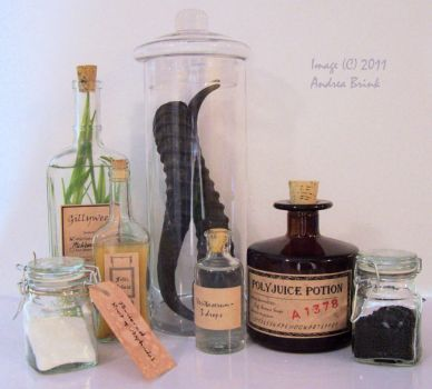 The Potion Master's Set -STOCK by TheCopperDragon2004