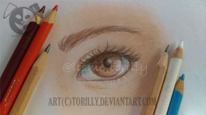 Brown eye by Torilly