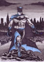 Batman Blue and Grey by antacidimages