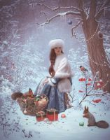 Winter Tale by Twinkle-space