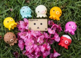 A bed of flowers for the Danbo~! by PiliBilli