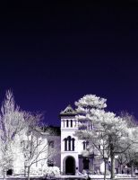 Infrared III by ilimel