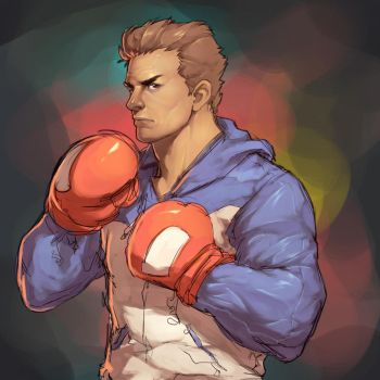 Boxer - Practice by Mick-cortes