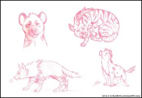 Hyena Sketches~ by mother-child