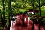 Blood Red River by Silver-Dew-Drop