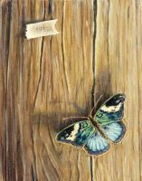butterfly on the wood by inkasi