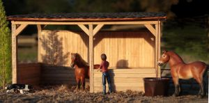 Shelter for the pasture :) by PhoenixRanch