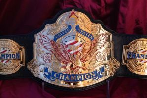 The History of the PFA United States Championship by Branded-Curse