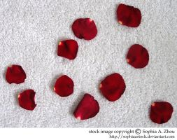 stock 234: rose petals by sophiaastock