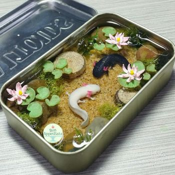 Commission - Axolotl Altoids Pond 2 by Bon-AppetEats