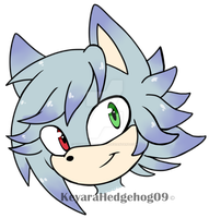 PC cassidythehedgehog1 by KeyaraHedgehog09