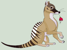 Hugh the Thylacine by Kainaa