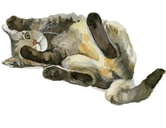 Watercolor Tabby by ryliecat
