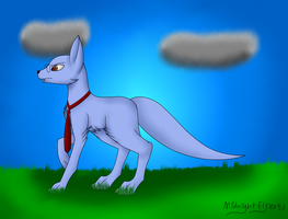 [COMMISSION] Wolf by MidNightFlyer53