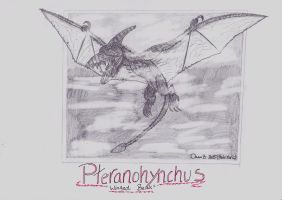 Pteranohynchus by XenoTeeth3