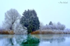 Frozen silouettes. by Phototubby