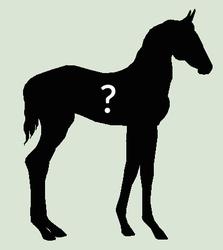 Mystery Foal Adopts #2 - 8 slots left by mkayswritings