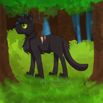 A nice stroll by pagentree
