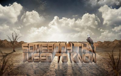Somebody That I Used To Know by wellgraphic